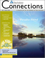 Connections spring-summer 2010 issue