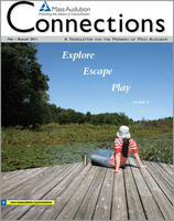 Connections Spring-Summer 2011 issue