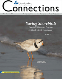 Summer 2012 issue of Connections
