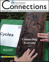Connections newsletter winter 2013