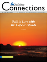Fall in Love with the Cape and Islands. Fall 2013 issue of Connections
