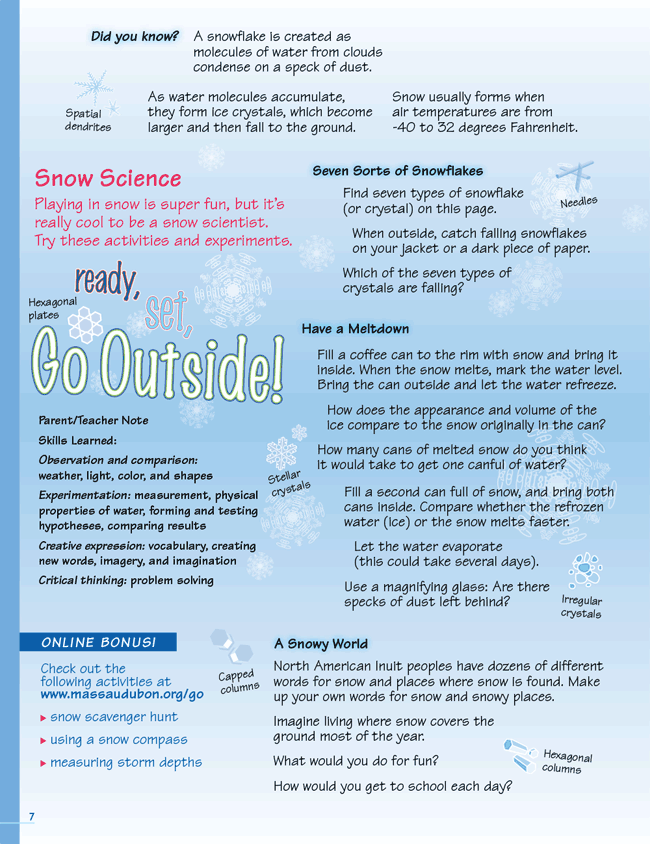 Snow Science Activity Page
