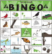 graphic relating to Spring Bingo Game Printable known as Check out a Sanctuary with Character Bingo