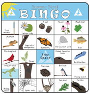 Summer Bingo Cards