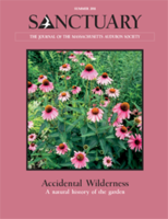 summer 2011 issue of Sanctuary magazine