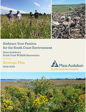 South Coast Sanctuaries Strategic Plan cover