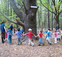 Kids circling a tree at Mass Audubon's Arcadia Wildlife Sanctuary