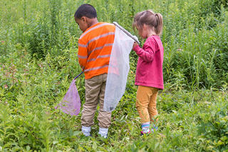 Two young children with nets in Arcadia meadow