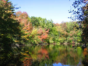 Pond at Attleboro Springs