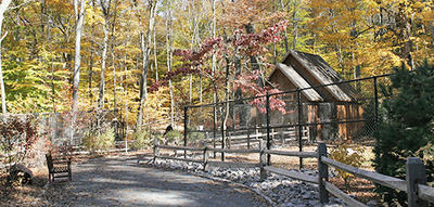Outdoor exhibits area at Trailside in fall