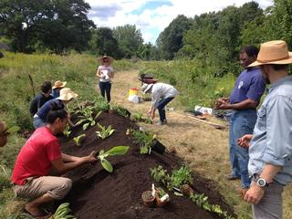 Boston Food Forest Coalition volunteers