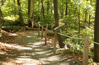 The All Persons Trail in spring at Broad Meadow Brook Wildlife Sanctuary