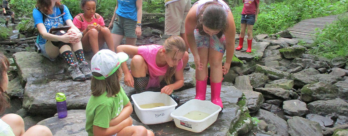 Broad Meadow Brook campers investigating a creek together