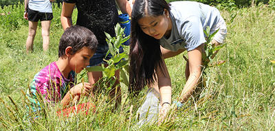 Campers exploring Wilson Meadow at Broad Meadow Book