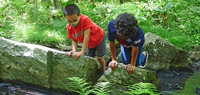 Campers wearing face masks exploring a brook together at Broad Meadow Brook Wildlife Sanctuary