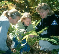 Children observing plants with a naturalist