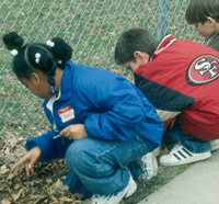 Kids looking at plants along a fence