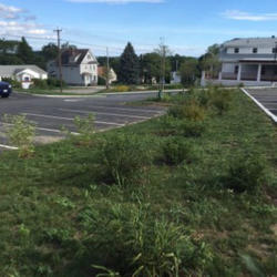 One of two no-mow areas decreases the amount of impervious surface in the parking lot and increases infiltration