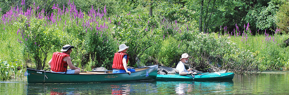 Adults canoeing at Broadmoor in summer