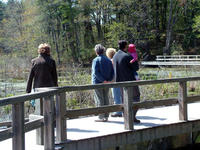 People walking on the marsh boardwalk at Broadmoor Wildlife Sanctuary