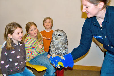 Kids up-close with a barred owl