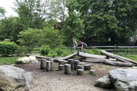 Nature Play Area at Broadmoor Wildlife Sanctuary
