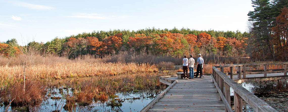 People on Broadmoor's boardwalk in fall