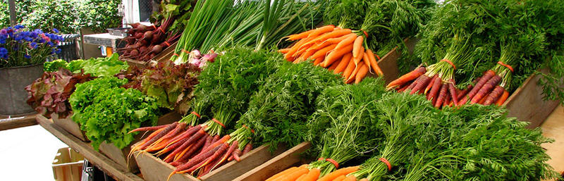 Produce at the Drumlin Farm Stand