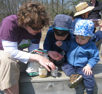 Kids with naturalist looking at insects