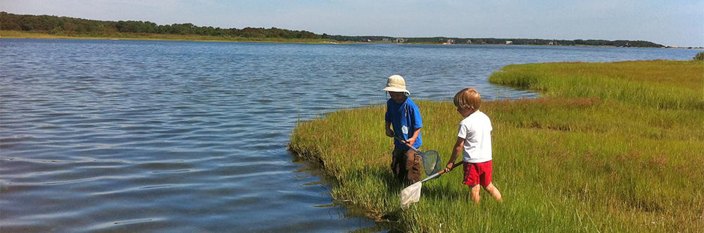 Kids playing in the marsh at Felix Neck Wildlife Sanctuary