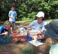 Preschoolers at Felix Neck Wildlife Sanctuary
