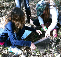 Students taking data at Felix Neck Wildlife Sanctuary