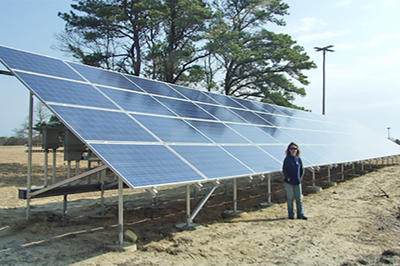 Sanctuary Director Suzan Bellincampi stands in front of Felix Neck's first solar array