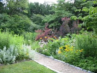 Arboretum in July © Sandy Vorce, Mass Audubon
