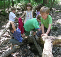 Children playing on a log