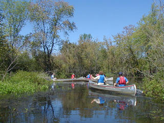 Canoeing on the Ipswich River (Photo: Carol Decker)