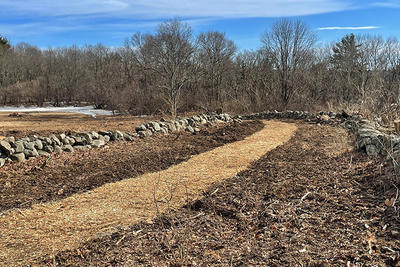Habitat restoration and new trail construction at Ipswich River Wildlife Sanctuary in March 2021