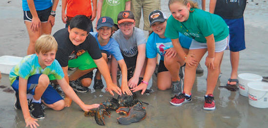 Campers on beach with huge lobster