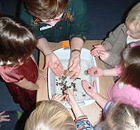 Preschool students learning about marine invertebrates