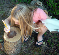 Child counting tree rings at Long Pasture Wildlife Sanctuary