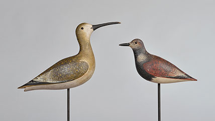 Eskimo curlew and ruddy turnstone by John Dilley. Collection of The Farmers' Museum.