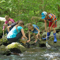 Homeschool students exploring a stream