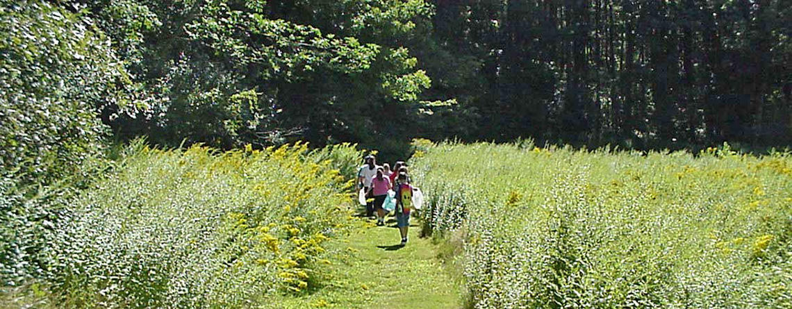 Kids on MABA's meadow trail in summer