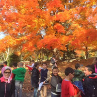 Students outdoors at MABA in fall