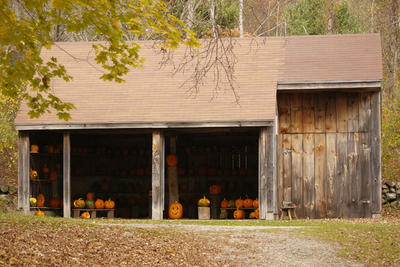 Carved pumpkins in Moose Hill's barn for Halloween Prowl