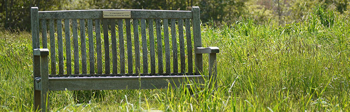 Bench at North River Wildlife Sanctuary