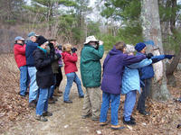 Group birding at Mass Audubon North River Wildlife Sanctuary