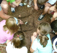 School group with a naturalist at their school