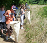 Scouts looking for butterflies at North River Wildlife Sanctuary