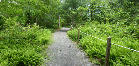 Sensory Trail at North River Wildlife Sanctuary
